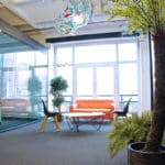 tropical plante verte