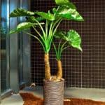 bananier plante verte artificielle
